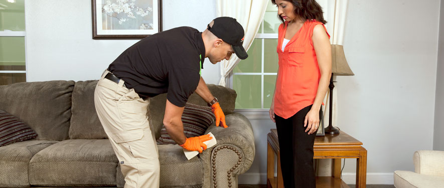 Manchester, TN carpet upholstery cleaning